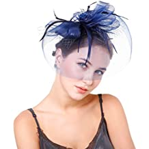 Preferhouse Women's Feather Fascinators Veil Flower Mesh Head Piece for Party