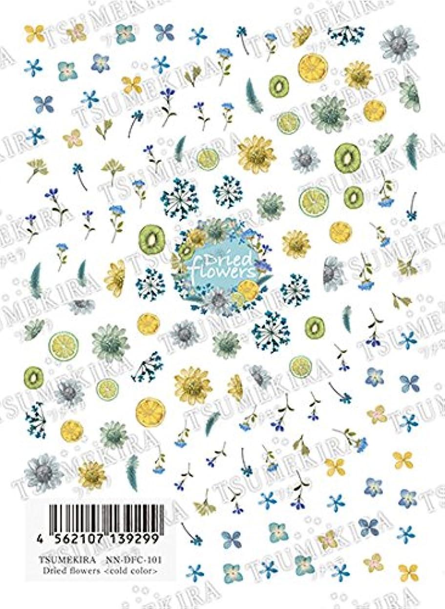 ツメキラ(TSUMEKIRA) ネイル用シール Dried flowers NN-DFC-101