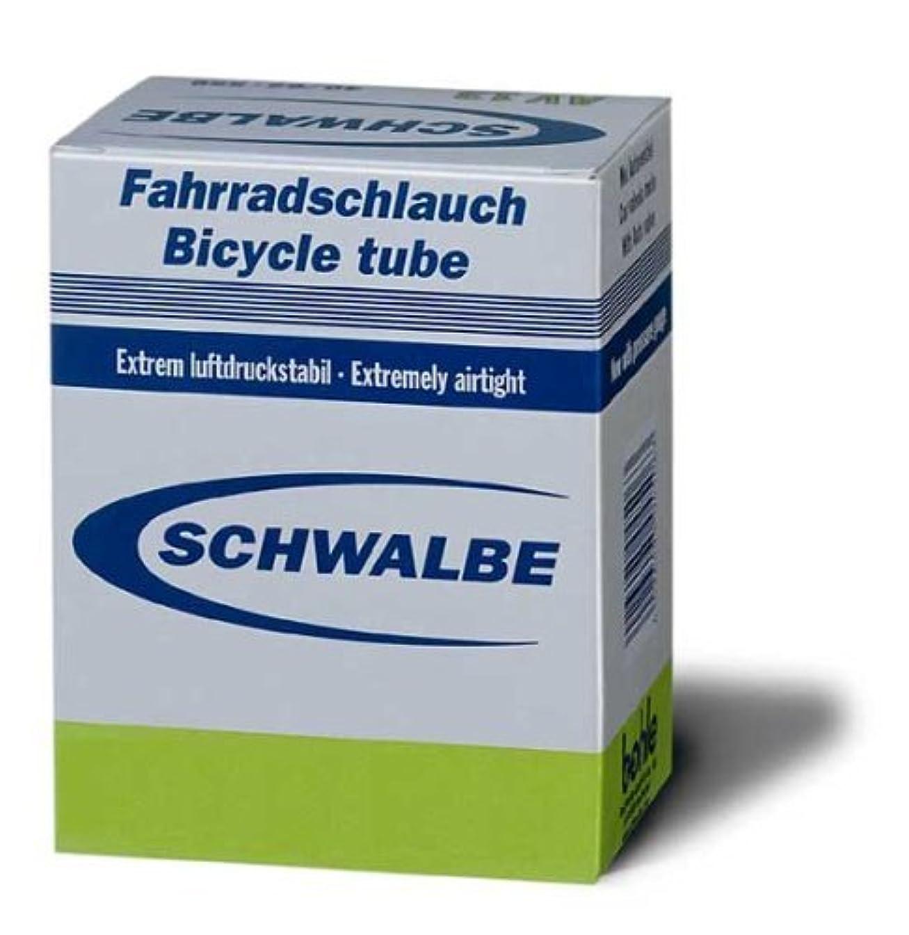 やりがいのある農村昆虫を見るSchwalbe AV15-Chambre à air - 700 x 18/28 à air à valve Schrader