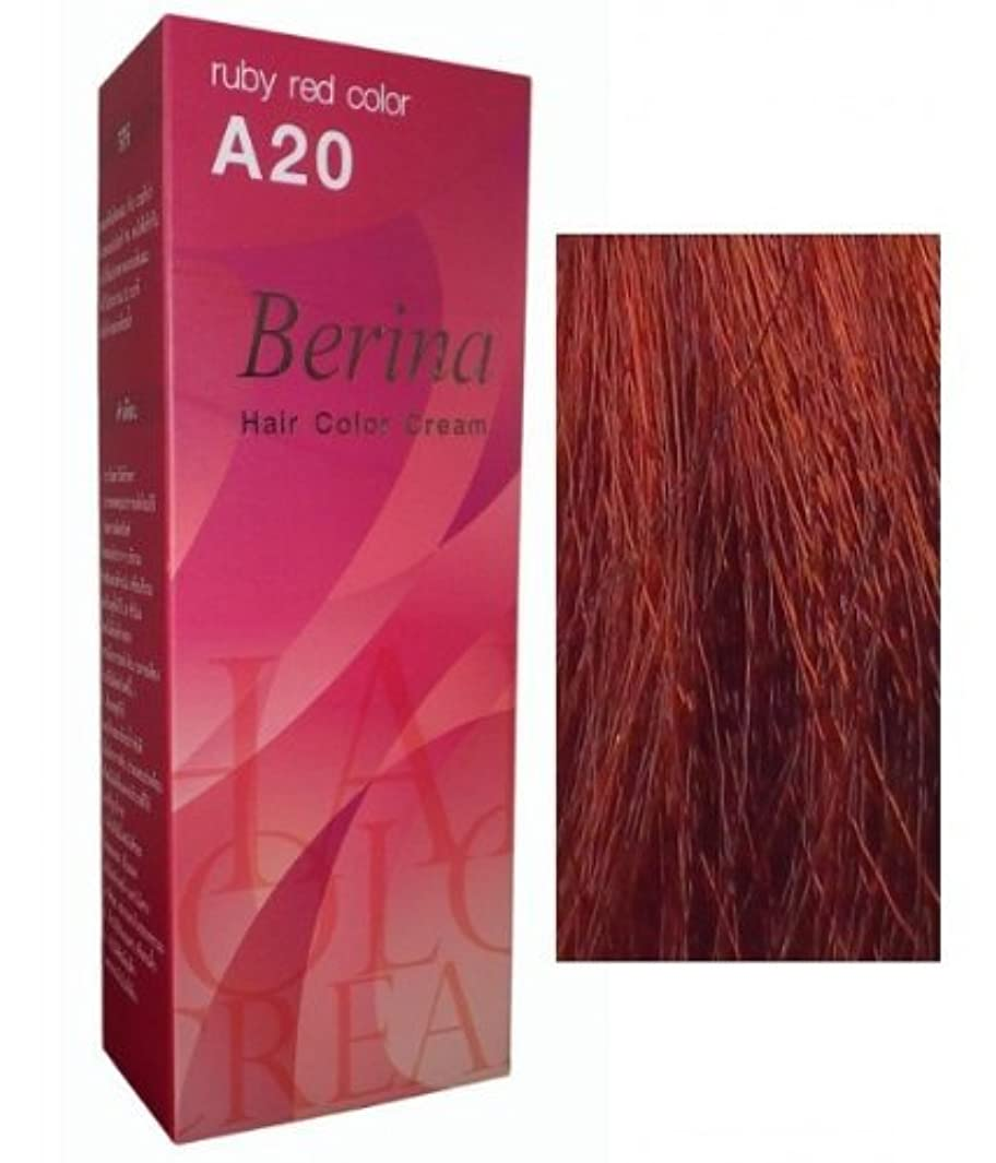 些細な決してベジタリアンPermanent Hair Colour Dye Berina Ruby Red by Berina