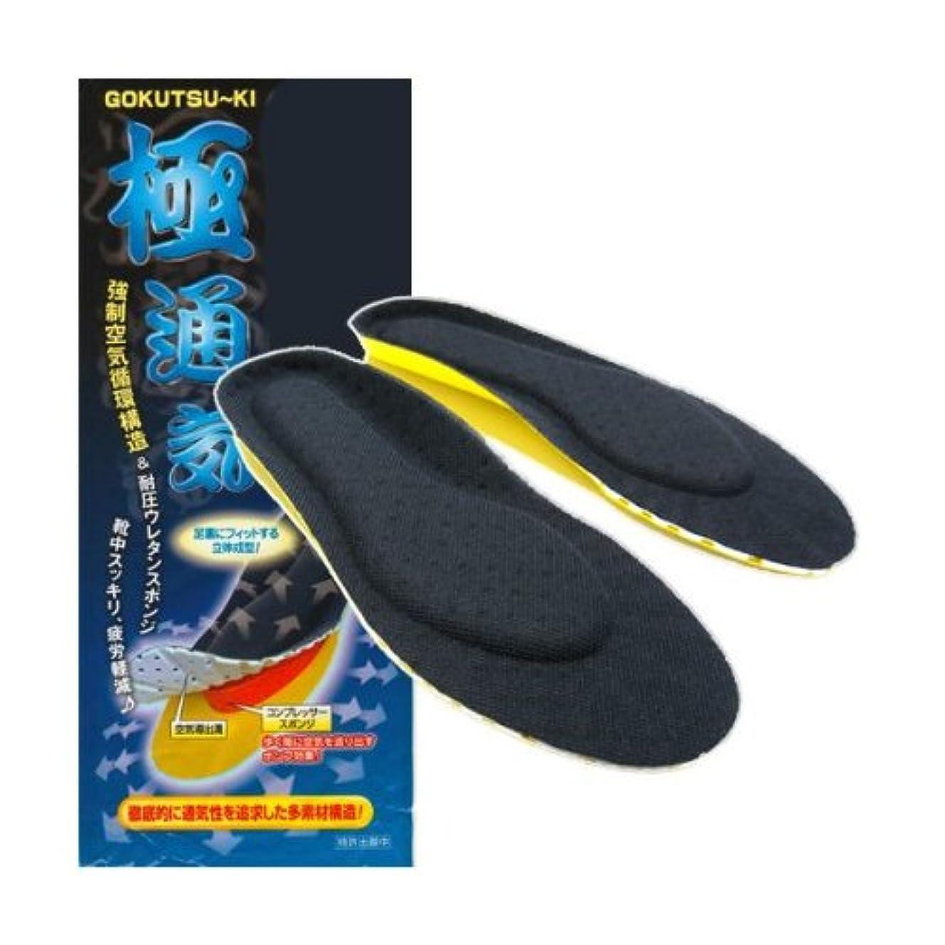 なんとなくプレフィックス日食is-fit 働く男 スーパー極通気インソール M 24.5~25.5cm 1足組