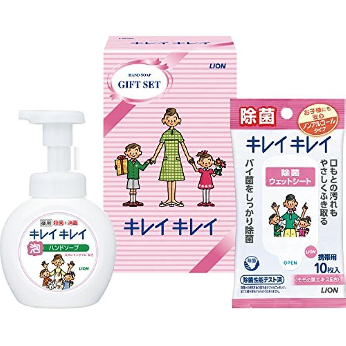 作業キネマティクス応答ライオン キレイキレイギフトセット 18-0558-014