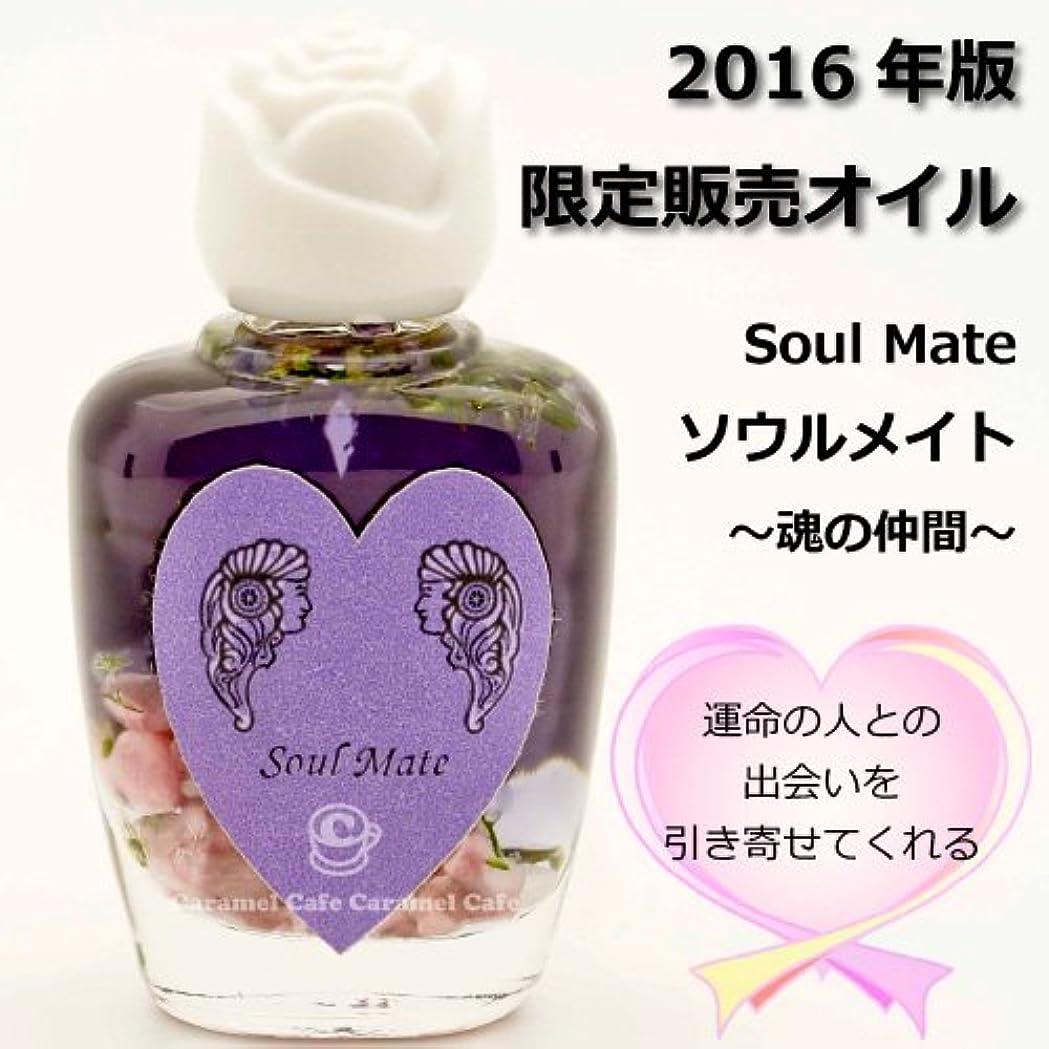 記録むしろキルスSEDONA Ancient Memory Oilsセドナ アンシェントメモリーオイル 2016年版限定販売オイル Soul Mate~魂の仲間~ 15ml