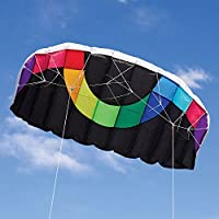 Into the Wind Hot Dog Stunt Kite