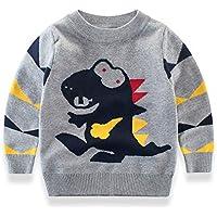 DDSOL Kids Boys Sweater Dinosaur Sweatshirt Long Sleeve Pullover Tee Shirt Cotton Sweatshirt Top Size 2-7T