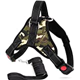 JISTL Dog Harness and Leash Set, Safety No Pull Adjustable with Soft Mesh Vest Harness for Small Dogs and Cats Easy Walk Outd