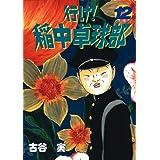 行け!稲中卓球部(12) (ヤングマガジンコミックス)