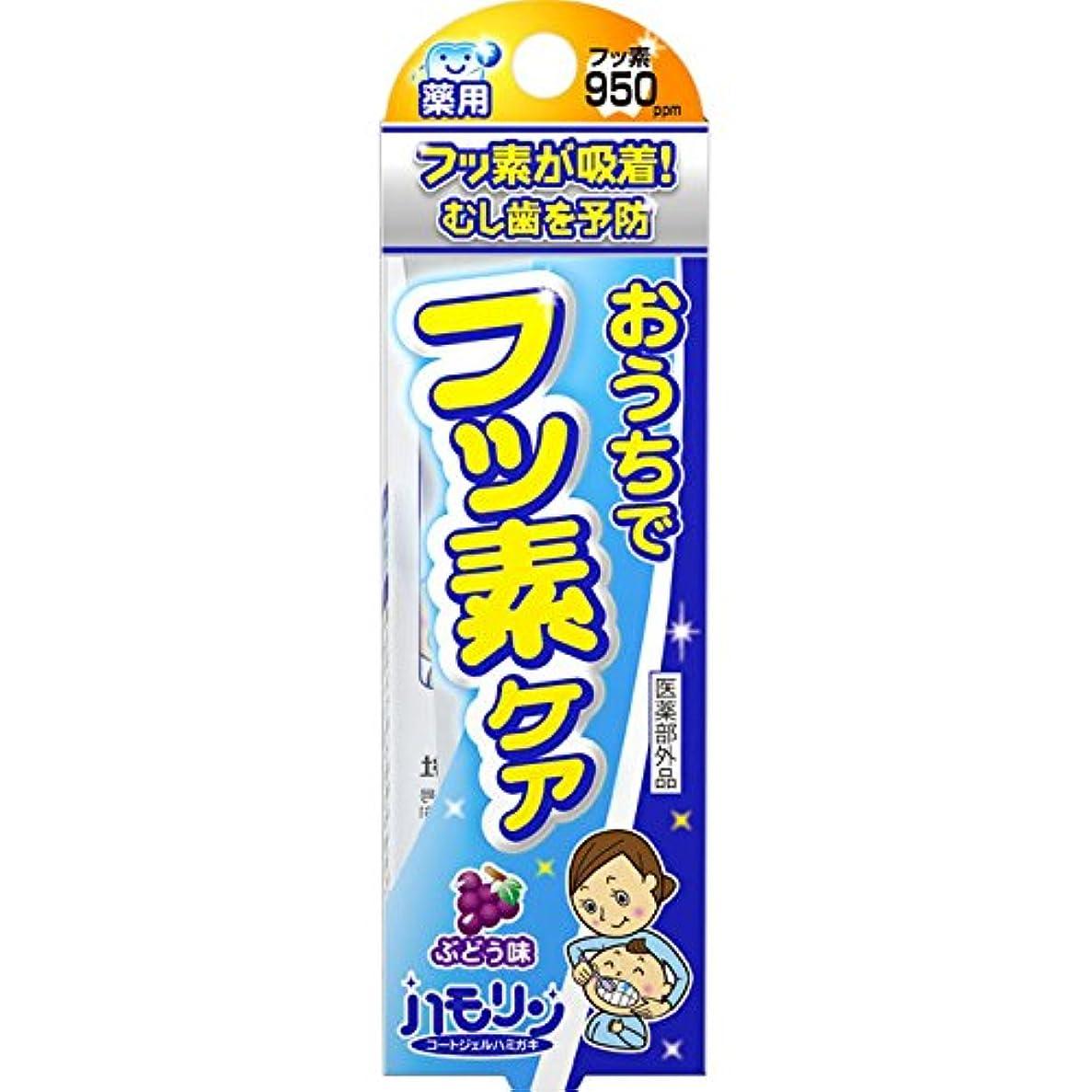 ラテン掃除納税者丹平製薬 ハモリン ぶどう味 30g