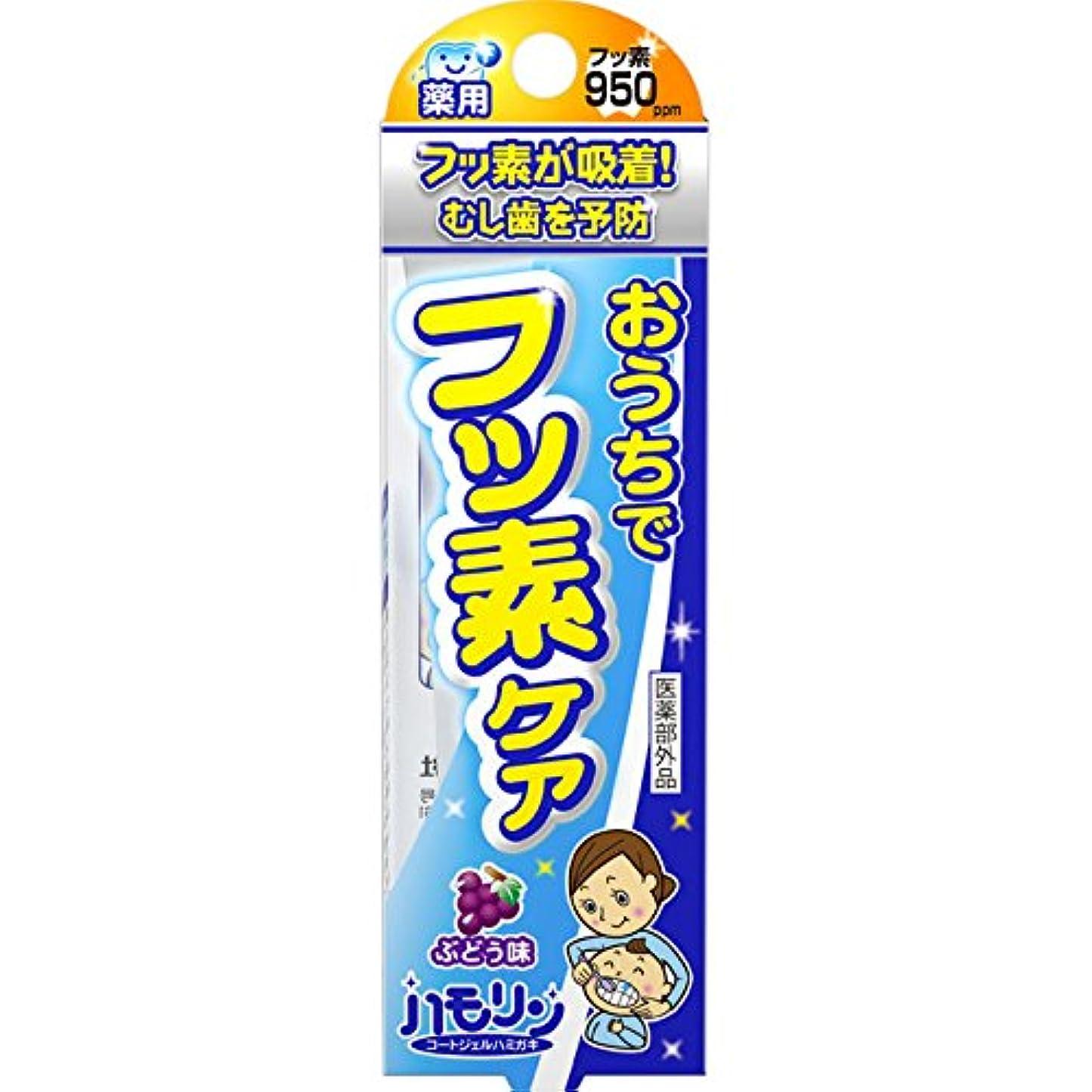 バット泥沼簡単に丹平製薬 ハモリン ぶどう味 30g