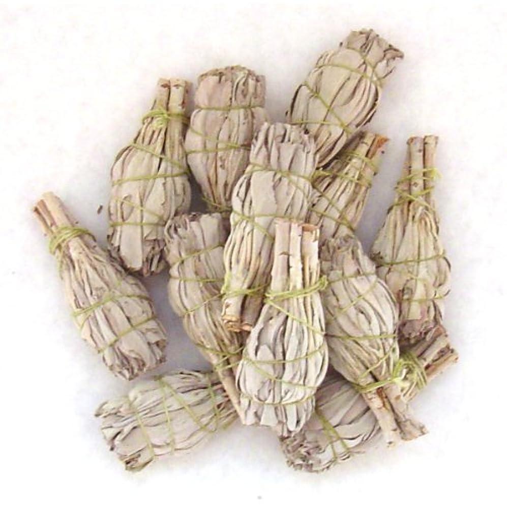 しかしながら散歩に行くしおれたMiniホワイトセージお香Wands – のセットで販売4束