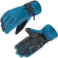 サロモン(SALOMON) スキーグローブ FORCE DRY M Black/MOROCCAN BLUE (フォース ドライ) L40420800 M