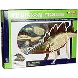 Famemaster 4D Vision Stegosaurus Anatomy Model by Fame Master