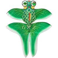 スモールサイズグリーンChinese Gold Fish Kite with Gift Box