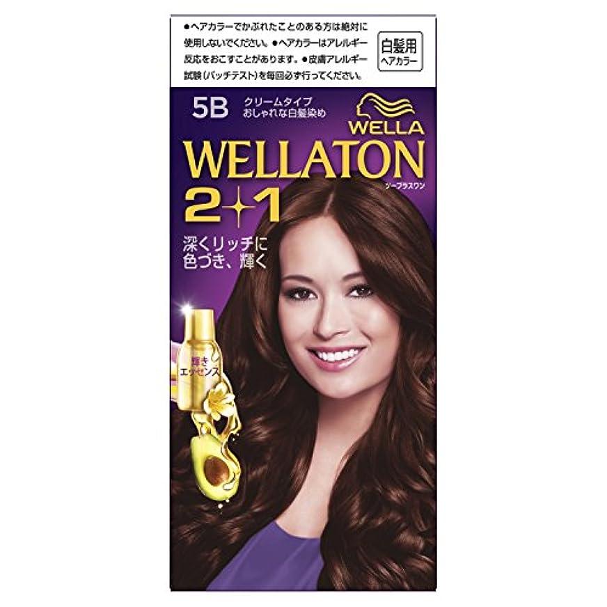 祖先アイドル影響力のあるウエラトーン2+1 クリームタイプ 5B [医薬部外品](おしゃれな白髪染め)