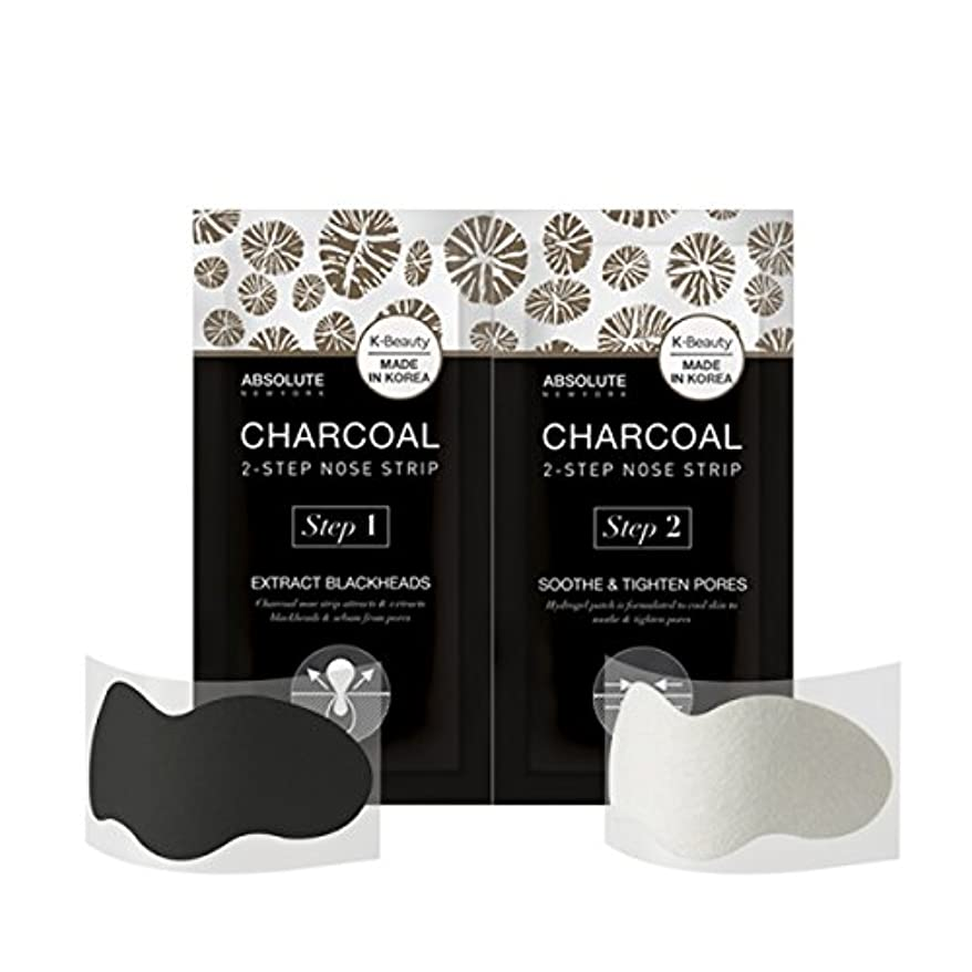 一貫性のないばかげた合成ABSOLUTE Charcoal 2-Step Nose Strip (並行輸入品)