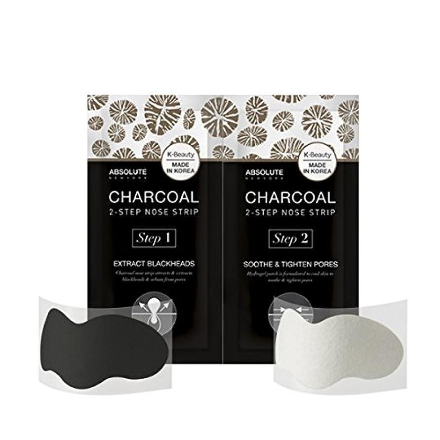 組立取り付け制限(3 Pack) ABSOLUTE Charcoal 2-Step Nose Strip (並行輸入品)