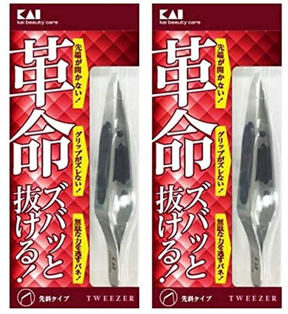 溶かすシーン不道徳キャッチャー毛抜き (先斜) KQ3096 2セット