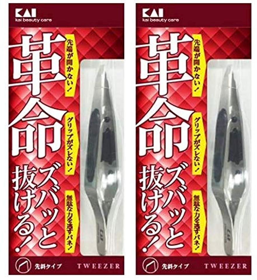 ワイヤーラフ進捗キャッチャー毛抜き (先斜) KQ3096 2セット