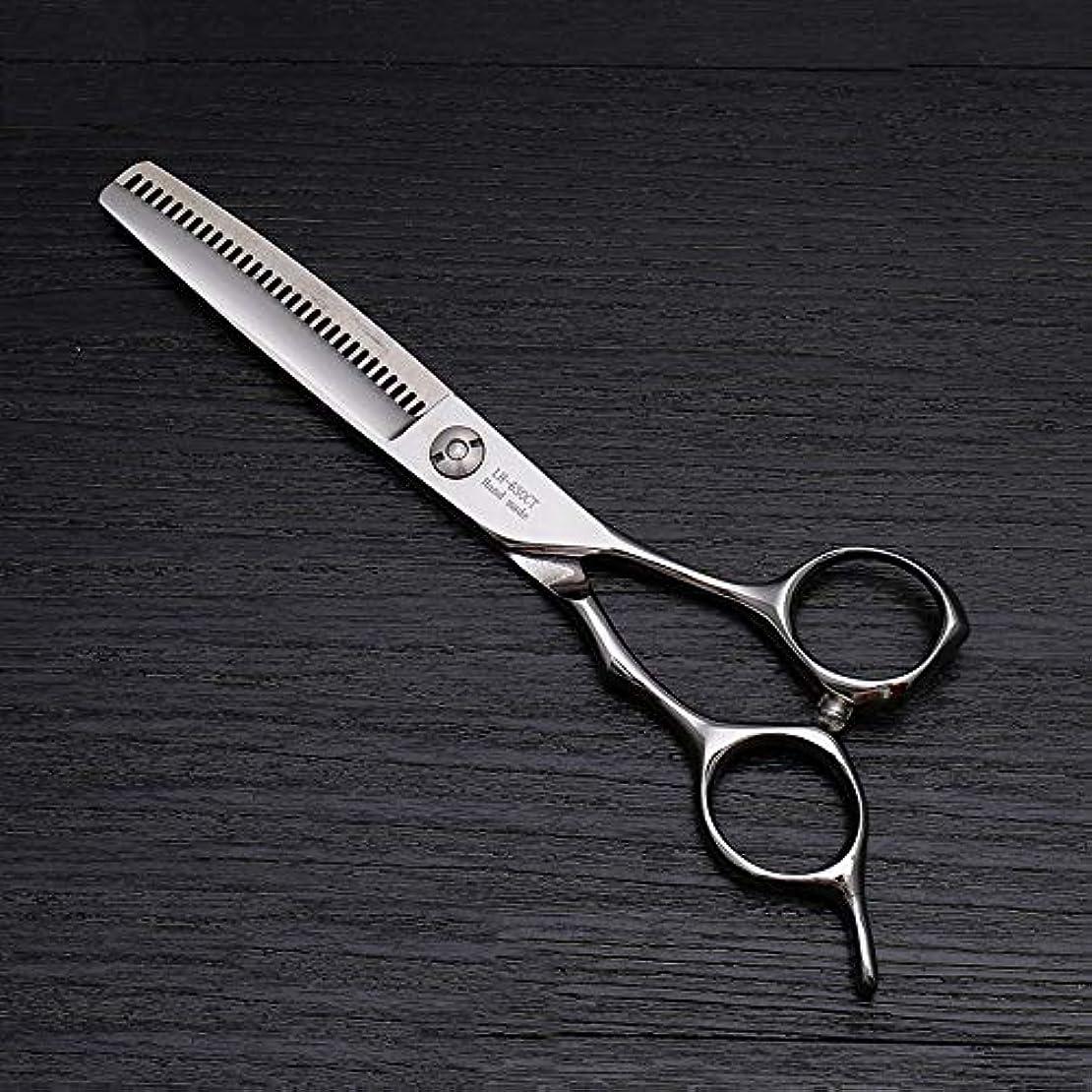 現像つま先逮捕6インチの高級ヘアカットはさみ、美容院の特別な髪はさみ モデリングツール (色 : Silver)