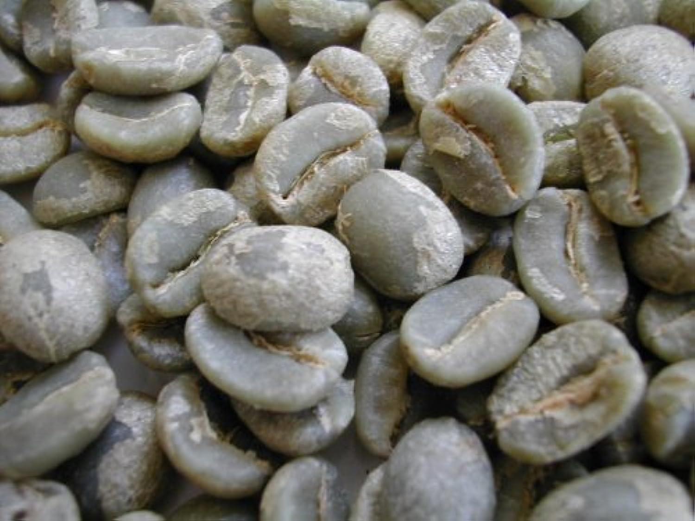 【生豆】グァテマラ ブエナビスタ農園 ブルボン100%  (生豆1kg)