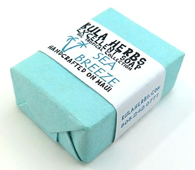 前奏曲運命的な項目ハワイ お土産 ハワイアン雑貨 クラハーブス エクセレント ソープ 石鹸 30g (ミント)