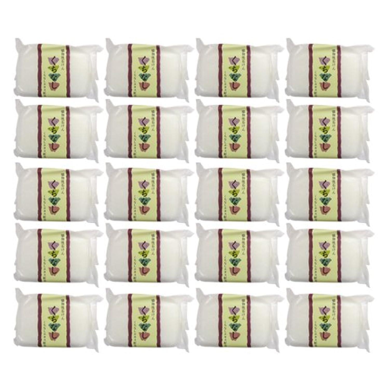 禁止する実り多い通信網植物性ソープ 自然石けん くちなし 80g×20個セット