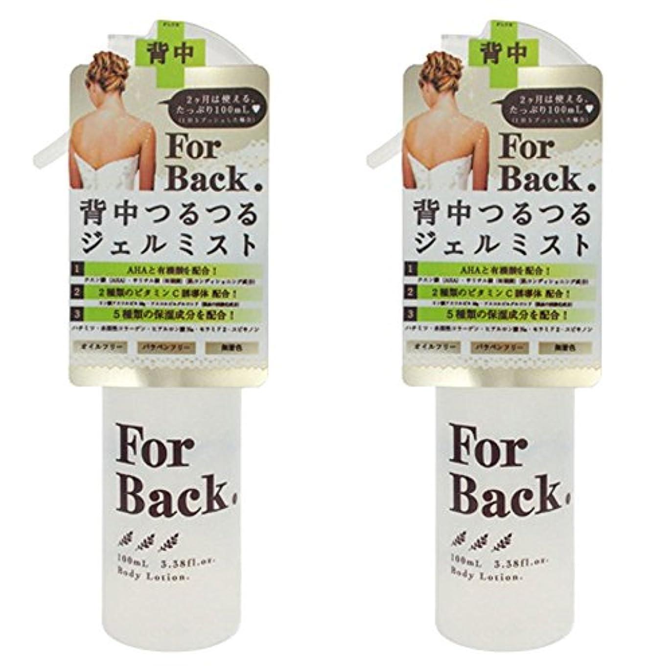不健康コンバーチブルチップ【セット品】ForBack ジェルミスト 100ml ×2個
