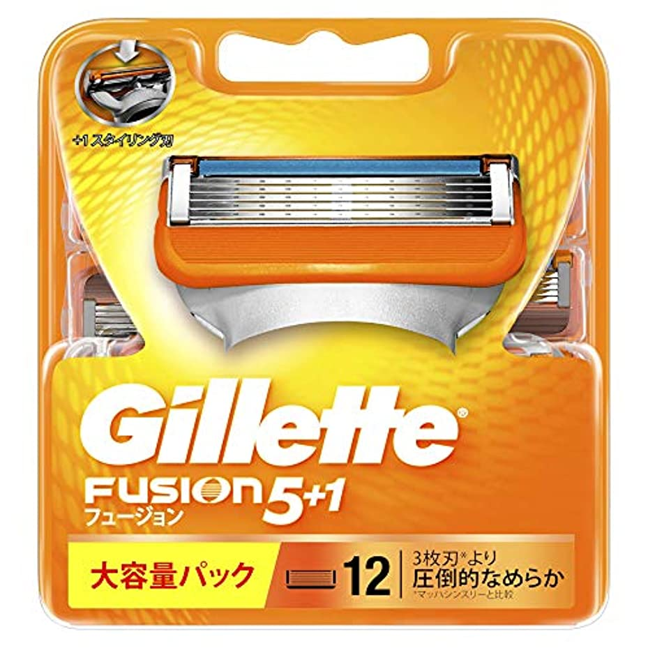 引き算関連付ける中央ジレット フュージョン5+1 マニュアル 髭剃り 替刃 12コ入