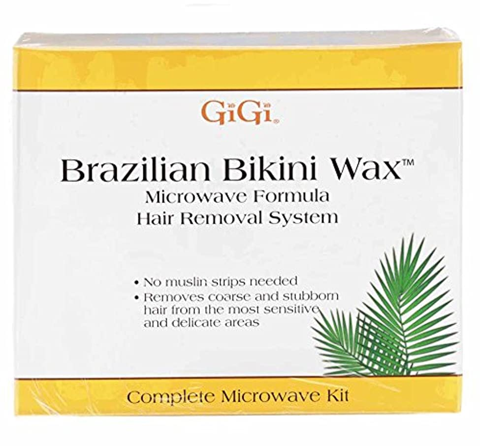 廃棄するハイキング上昇GiGi Brazilian Bikini Wax Microwave Kit