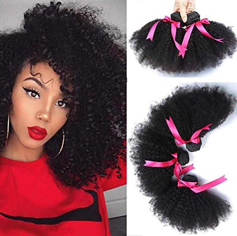 予防接種続ける壁ブラジルの髪バンドル女性100%未処理のバージンレミー人間の毛髪延長1バンドル変態巻き毛の織り