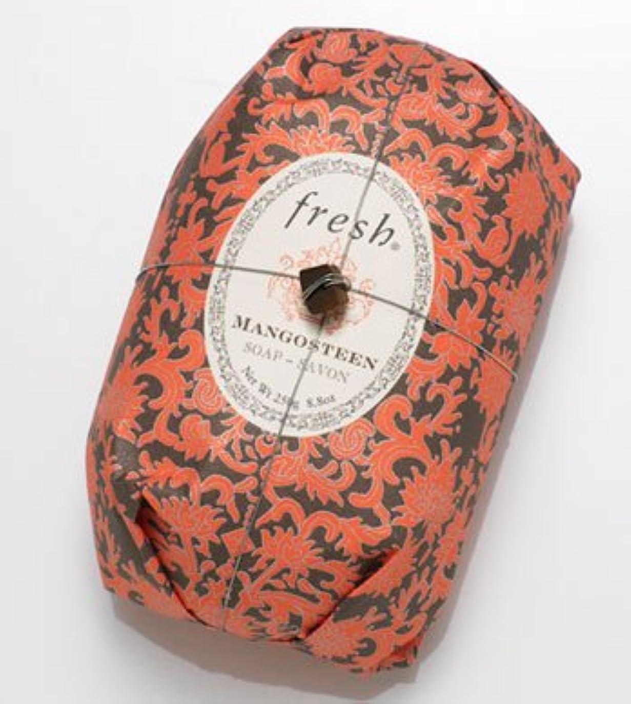 タンパク質薬理学微視的Fresh MANGOSTEEN SOAP (フレッシュ マンゴスチーン ソープ) 8.8 oz (250g) Soap (石鹸) by Fresh
