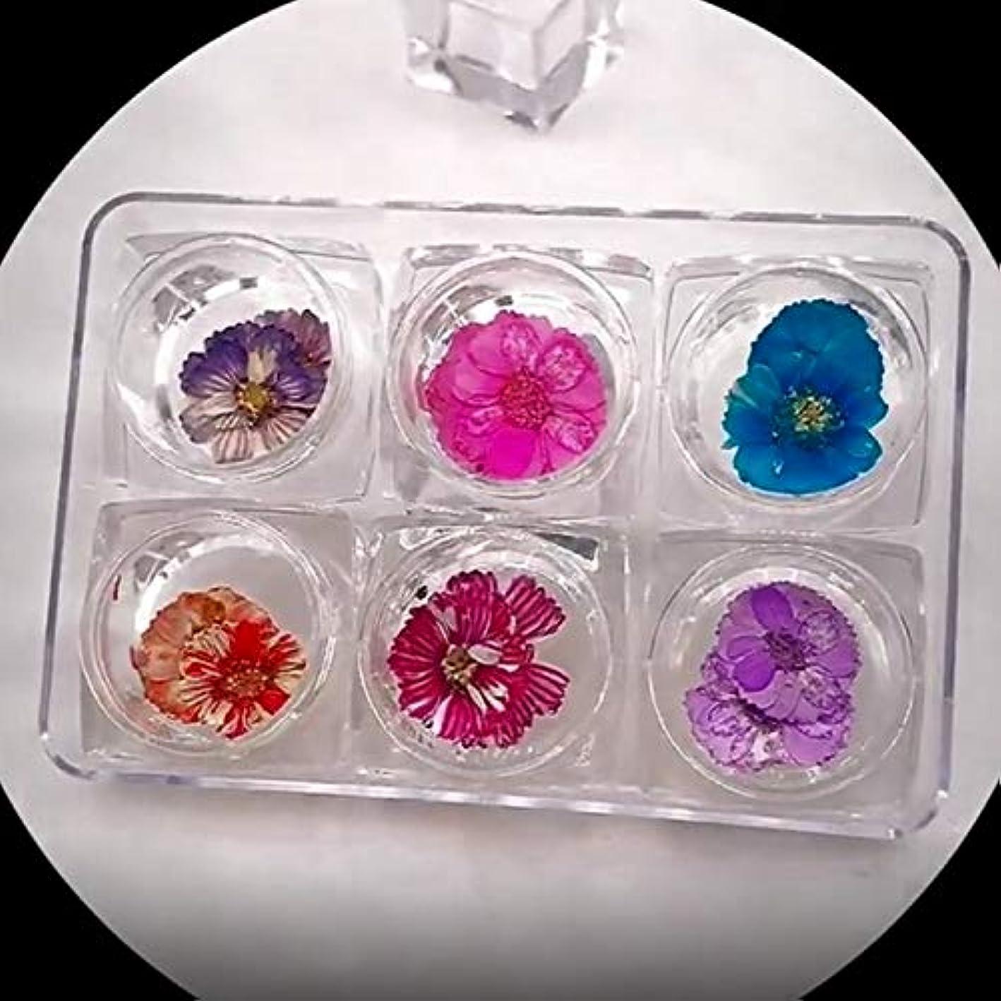 日付促す荒らすQuzama-JS 独創的な新しい6色ネイルアートアップリケジュエリーセット日本語乾燥花花びら永遠の花の結晶装飾(None Picture Color)