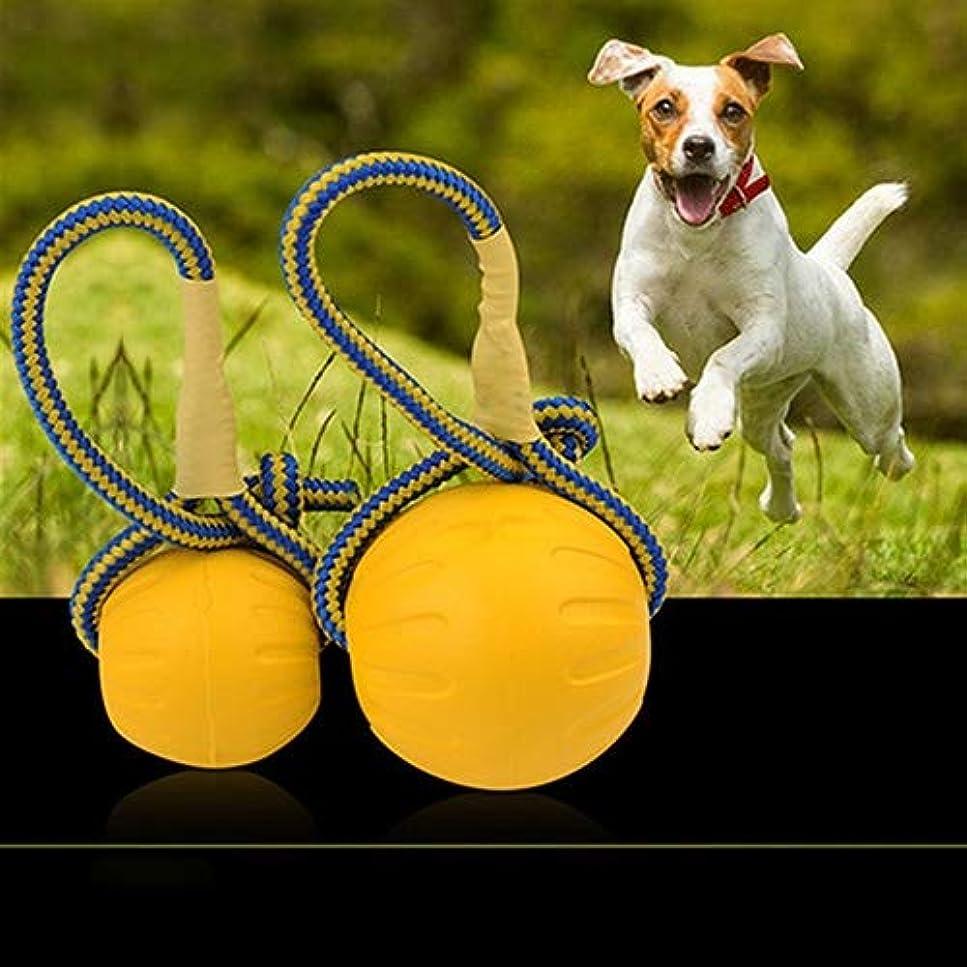 埋め込む産地気付くおもちゃペット 7センチメートル:YJペットは、Diameter、玩具弾性ボール臼歯は、ロープのハンドル、小型で耐歯のおもちゃ犬の訓練のボールのおもちゃをかむかみます in new 2020