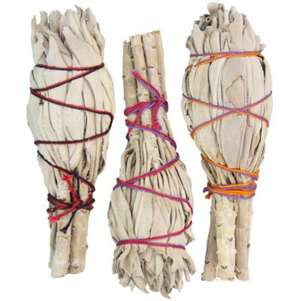 がっかりするシェトランド諸島不均一Smudge SticksバルクMiniカリフォルニアホワイトセージ(Pack of 24 )