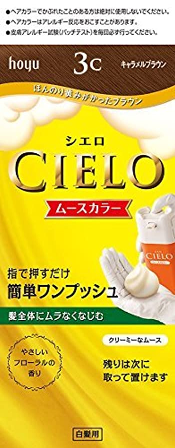 研磨ワードローブずっとホーユー シエロ ムースカラー 3C (キャラメルブラウン)×6個