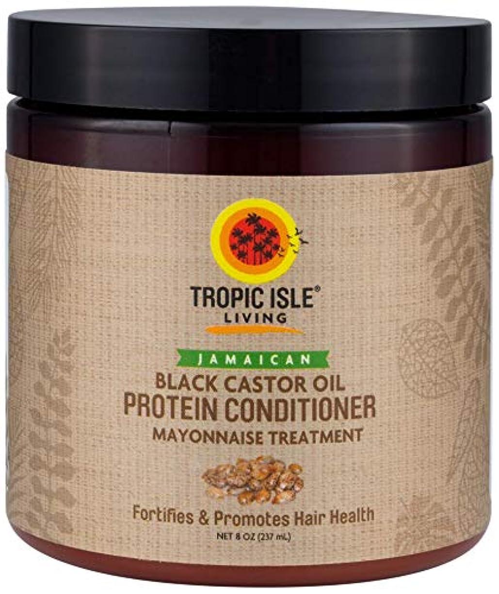 東ティモール隣接する投獄Jamaican Black Castor Oil Protein Hair Conditioner by Tropic Isle Living