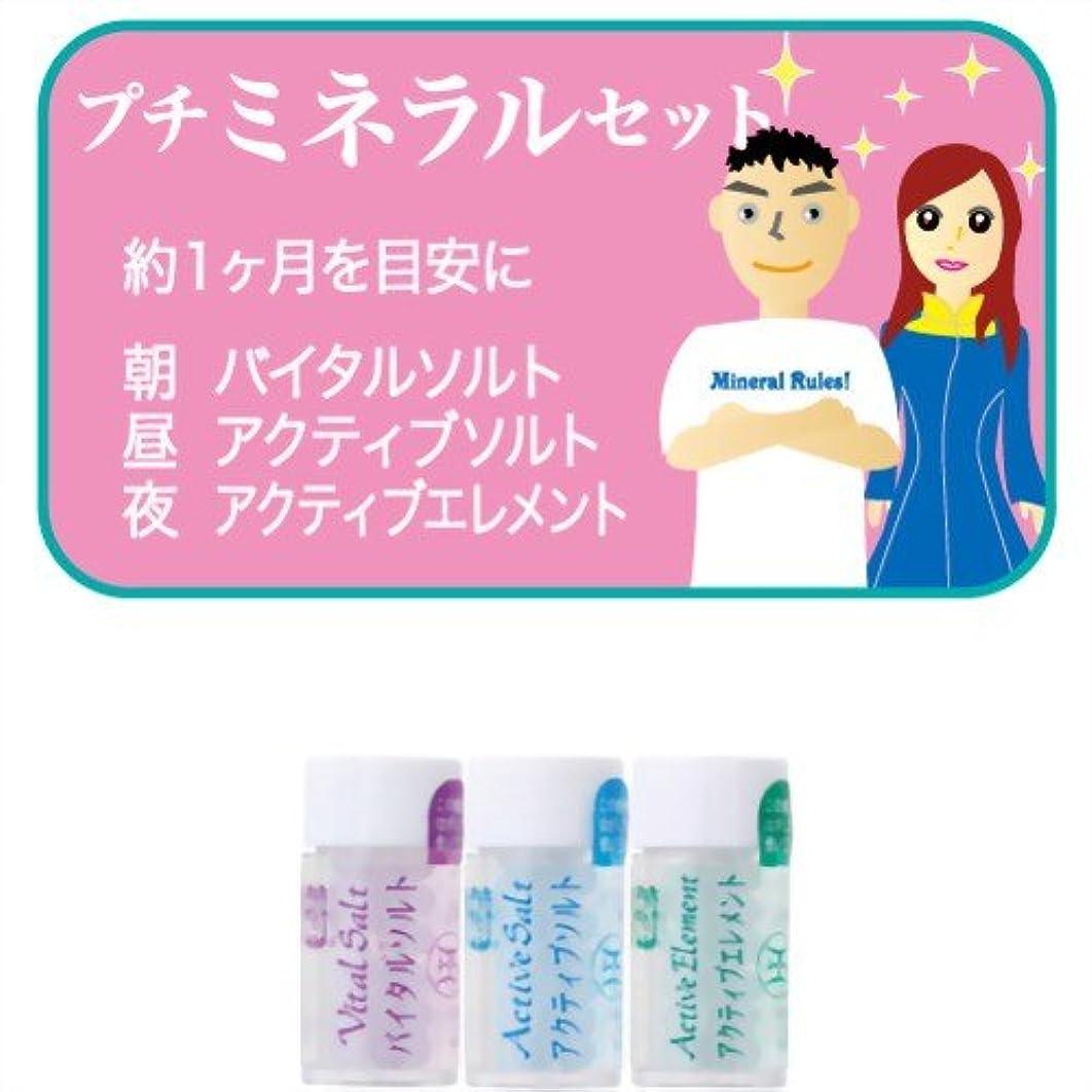 ホメオパシージャパンレメディー プチミネラルセット