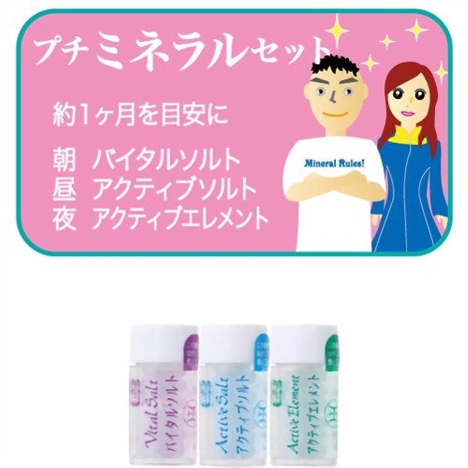 好意シガレット荷物ホメオパシージャパンレメディー プチミネラルセット