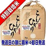 令和 元年産 熊本産 特別栽培米 コシヒカリ 10kg 阿蘇地区指定 (白米精米(精米後約4.5k×2))