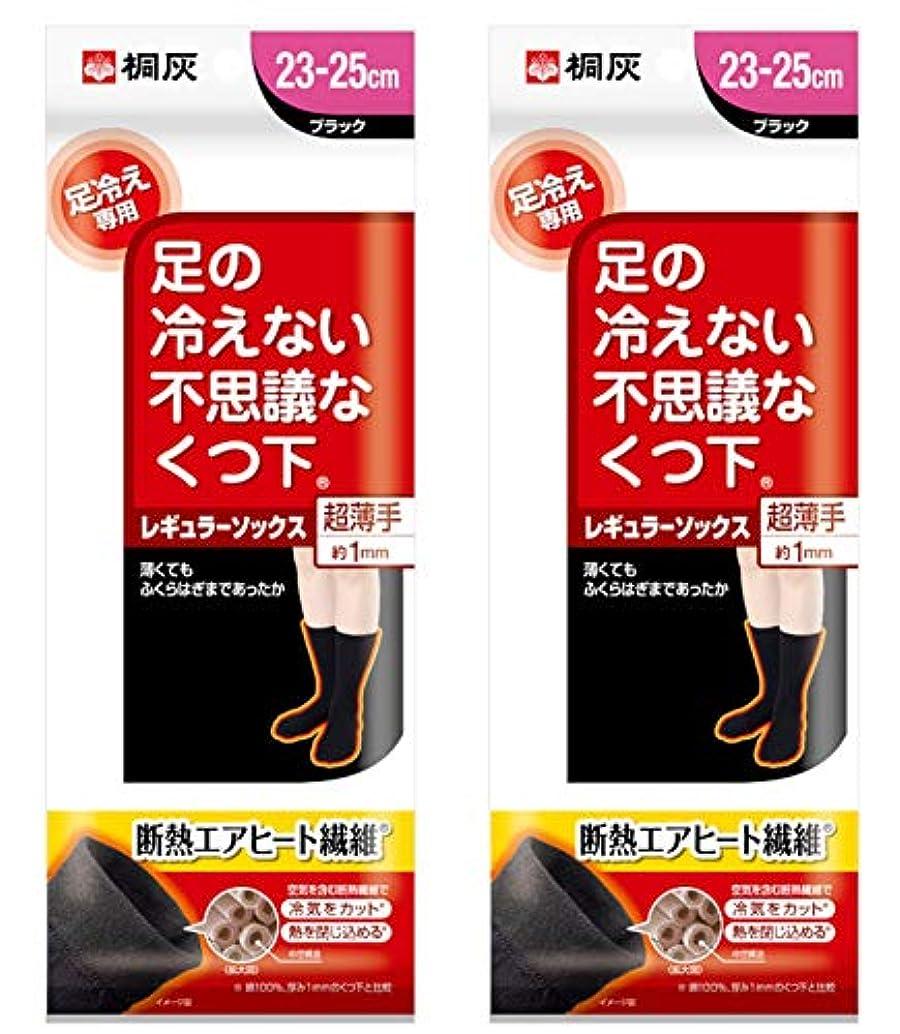 商人センチメンタル破壊的な足の冷えない不思議なくつ下 レギュラーソックス 超薄手 ブラック 23-25cm×2個