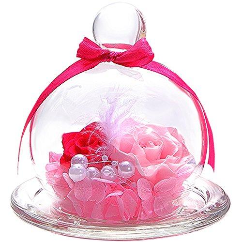 TEATSIGHT プリザーブドフラワー フラワーアレンジ ラッピング済み ガラスポット入り 2輪 (バラ ピンク)