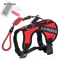 ZXPzZ ペット牽引ロープ付き犬用チェーンストラップ犬の鎖の大きいつばのつばの耐衝撃性ペット用品 (色 : B, サイズ さいず : 45X60cm)