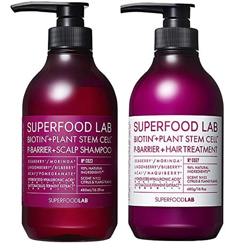 あらゆる種類の眉をひそめる完全にSUPERFOOD LAB BIOTIN + P-BARRIER SHAMPOO & TREATMENT