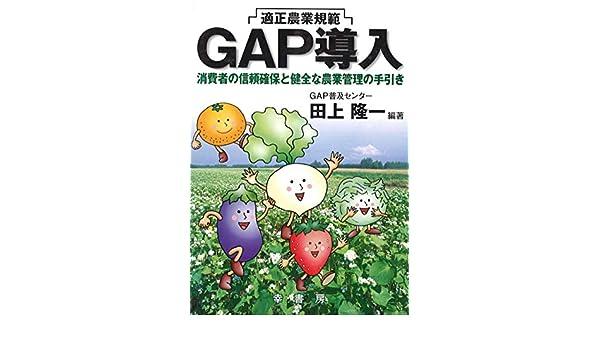 GAP導入 (GAPシリーズ) | 田上 隆一 |本 | 通販 | Amazon