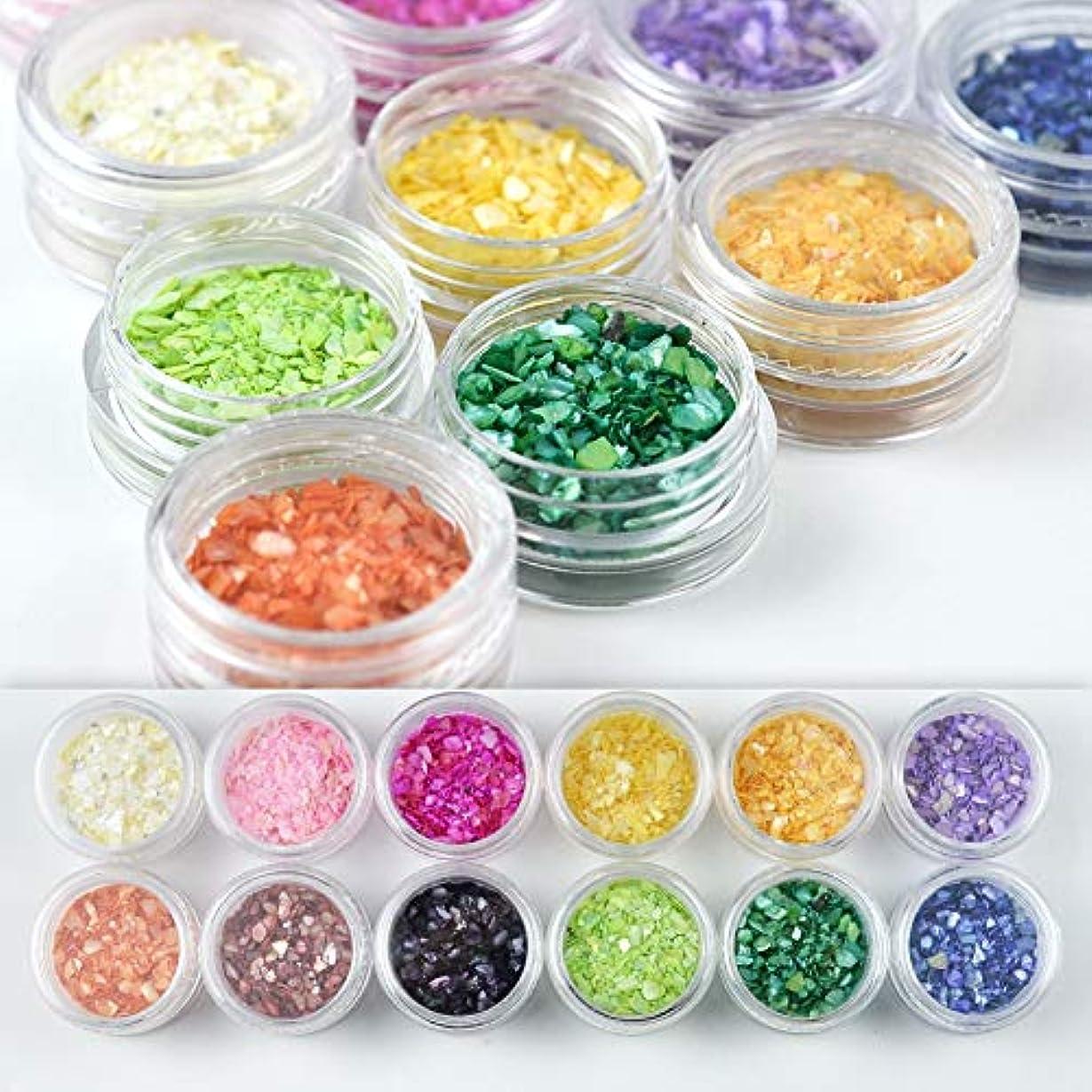 分類申し立てられたしばしばメーリンドス マニキュアシェルパーツ シェルパウダー貝殻効果スパンコール DIYグリッターデザイン ミックスサイズ 厳選12色/セット