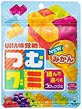 味覚糖 つむグミ 袋 102g×10袋