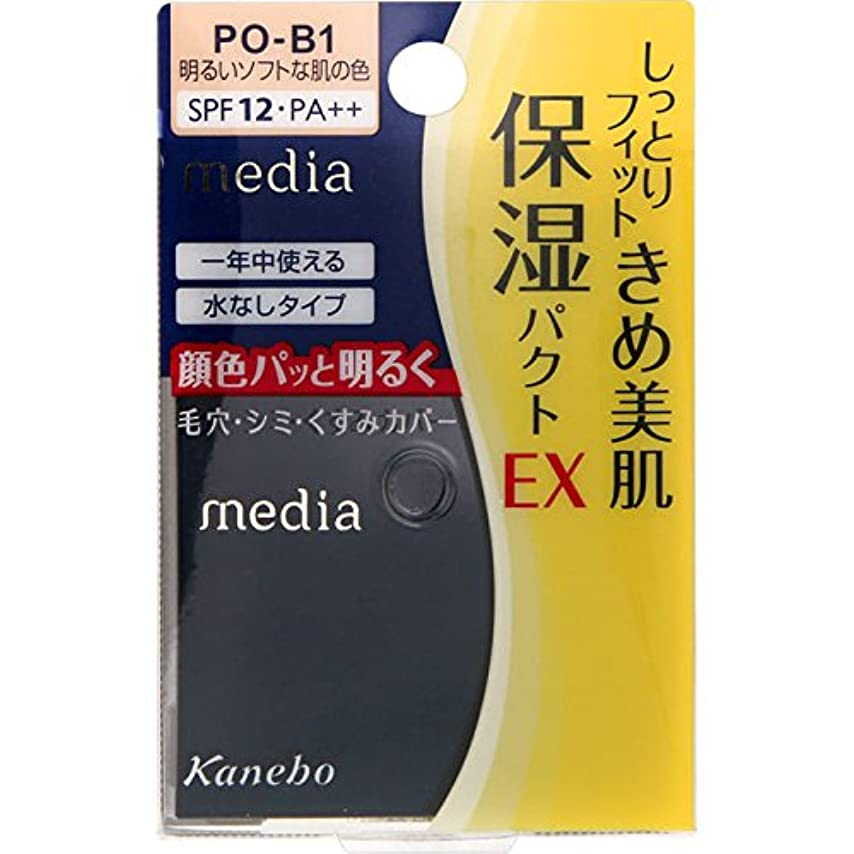 ジーンズ正当化する使い込むカネボウ メディア モイストフィットパクトEX PO-B1(11g)