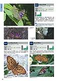 昆虫探検図鑑1600 -写真検索マトリックス付- 画像