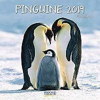 Pinguine 2019. Broschuerenkalender: Broschuerenkalender mit Ferienterminen