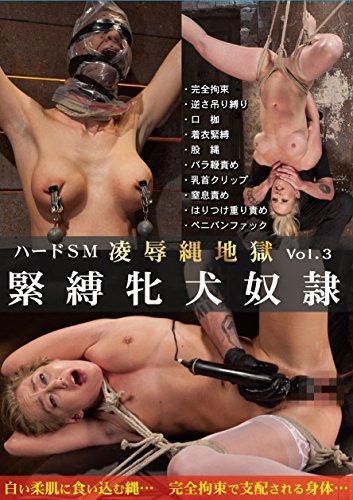ハードSM 凌辱縄地獄 vol.03 緊縛牝犬奴隷 PAINBLOOD/妄想族 [DVD]